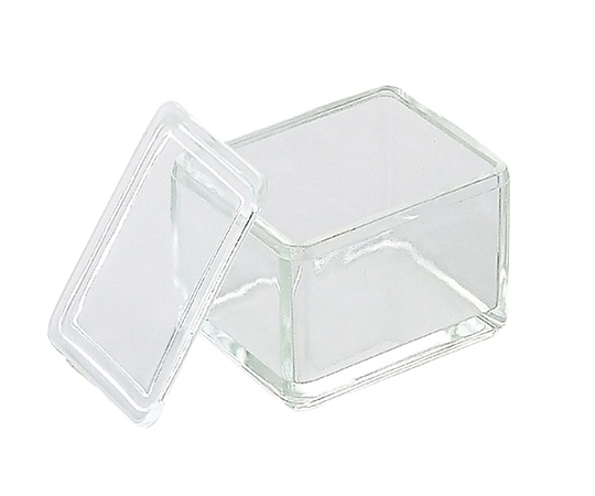 Staining Tray (Glass) for 20 Pieces 10130520