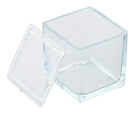 Staining Tray (Glass) for 30 Pieces 10130530