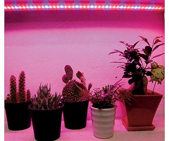 植物育成補光用LEDライト