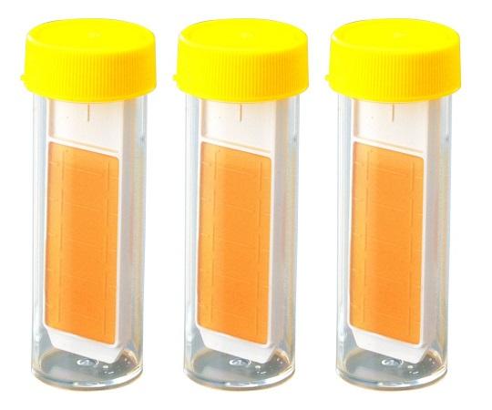 バイオチェッカー (真菌(カビ|酵母)測定用) M