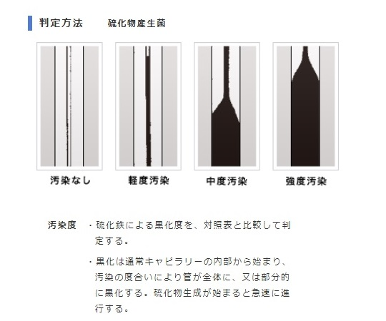 バイオチェッカー (硫化物産生菌測定用) S
