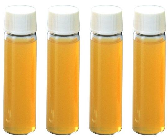 バイオチェッカー (硫化物産生菌測定用)