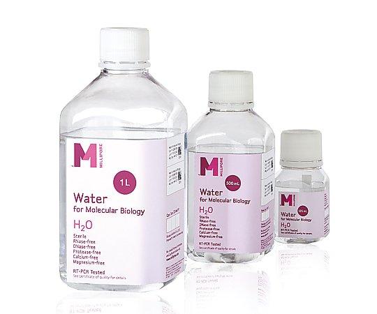 分子生物学用精製水