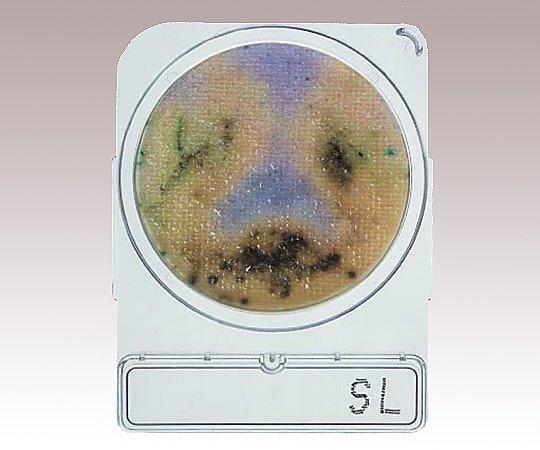 コンパクトドライ (サルモネラ検出用/4枚×10袋)