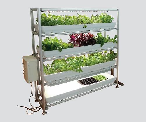 プラネット植物工房 植物栽培棚
