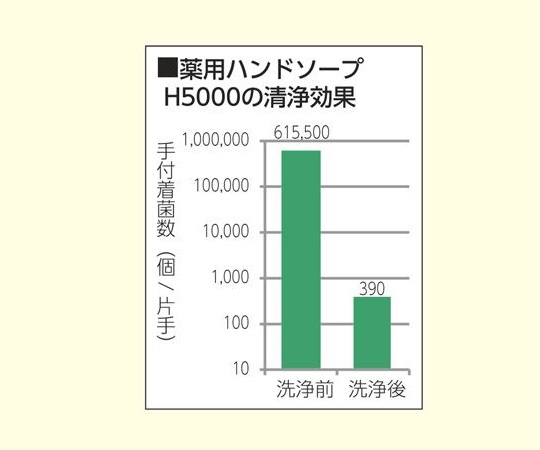 業務用薬用ハンドソープ Sani-Clear (サニクリア) 無香料 5kg 1本入 H5000