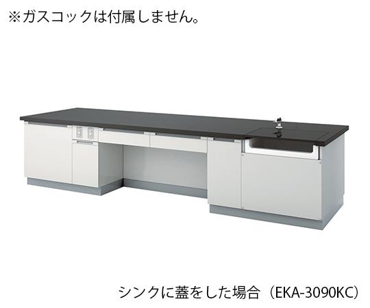 教師用実験台 2400×900×800 mm EKA-2490KC