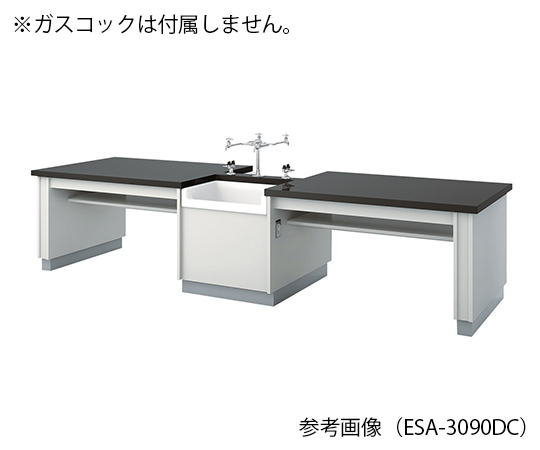 生徒用実験台 3000×900×700 mm ESA-3090DCL