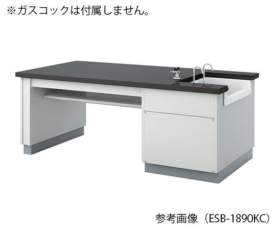 生徒用実験台 1800×900×700 mm ESB-1890KCL