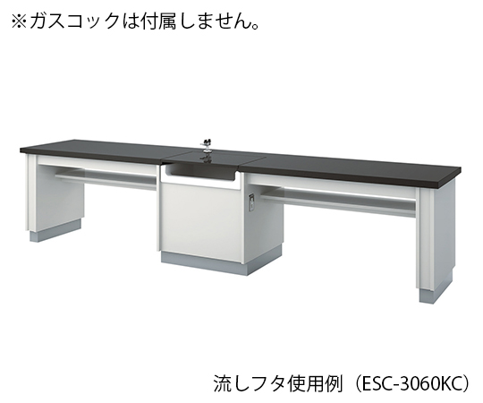生徒用実験台 3000×600×700 mm ESC-3060KCL