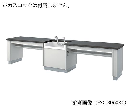 生徒用実験台 3600×600×760 mm ESC-3660KCM