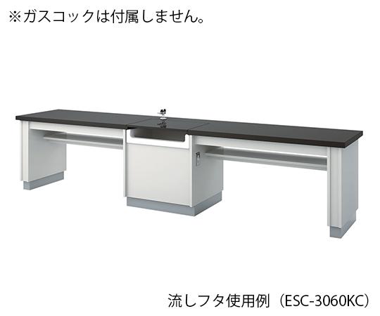 生徒用実験台 3600×600×800 mm ESC-3660KC