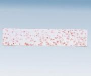 簡易菌検出紙 (一般細菌用)