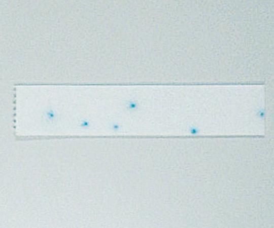 簡易菌検出紙 (大腸菌群XTYPE)