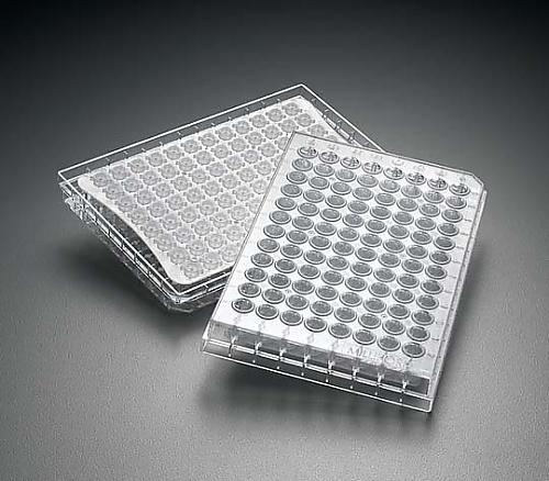 MultiScreen HTS HV 0.45μm Clear Non-sterile 10/Pk MSHVN4510 10PK