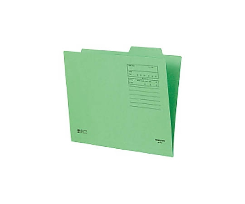 個別フォルダー(カラー) A4 緑 A4-IFG