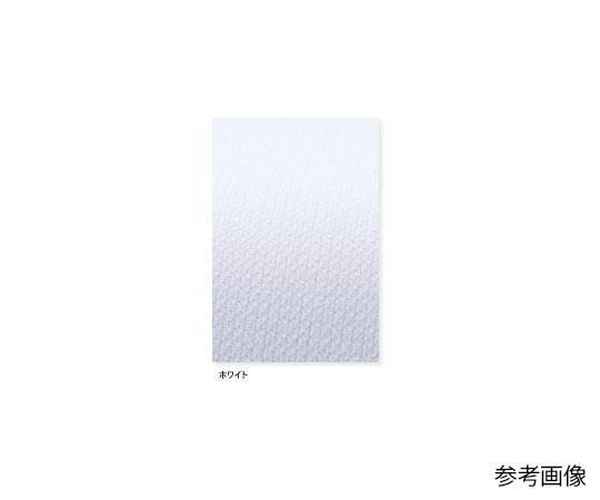 [取扱停止]看護衣半袖 ホワイト L HS967
