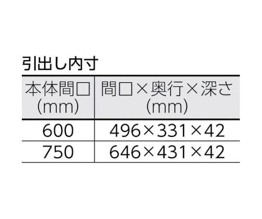 フェニックスワゴン 750X500XH600 2段引出付 W色 PEW-672X-W