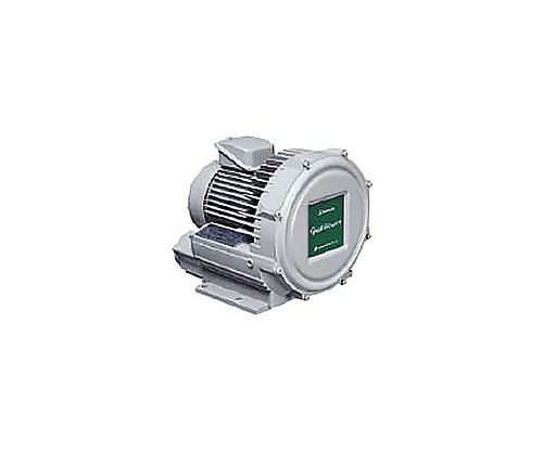 電動送風機 渦流式高圧シリーズガストブロア