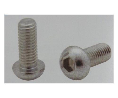 6角棒穴付ボタンボルト (10個) CSDM6X8P-3C