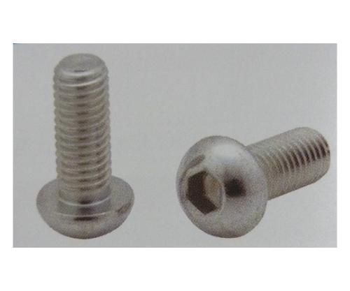 6角棒穴付ボタンボルト (10個) CSDM6X25P-3C