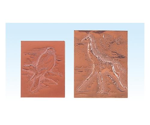 浮出彫刻(240×305)