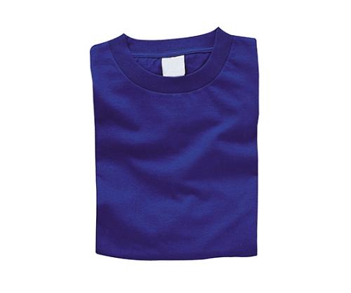 [取扱停止]カラーTシャツ XL 7ロイヤルブルー 38731