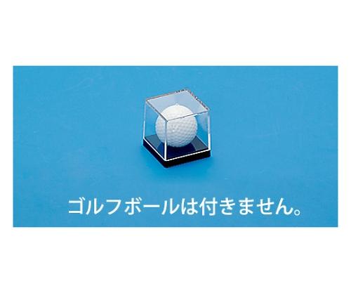 ゴルフボール 1P 560843