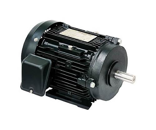 高効率モータ プレミアムゴールドモートル FBKA21E6P3.7KW