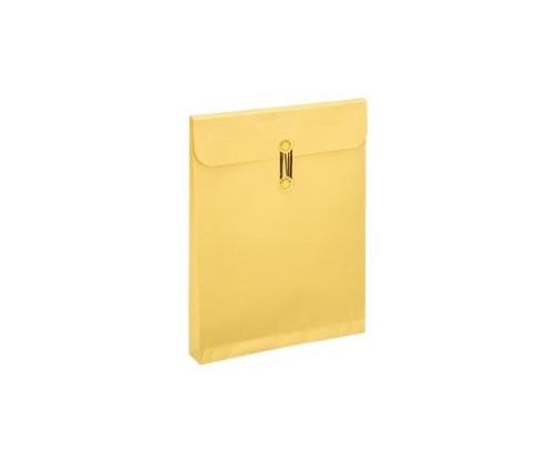 カーデックス保存袋 133