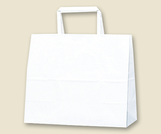 HEIKO 紙袋 H25チャームバッグ 26-2(平手) 白無地 50枚 003267000