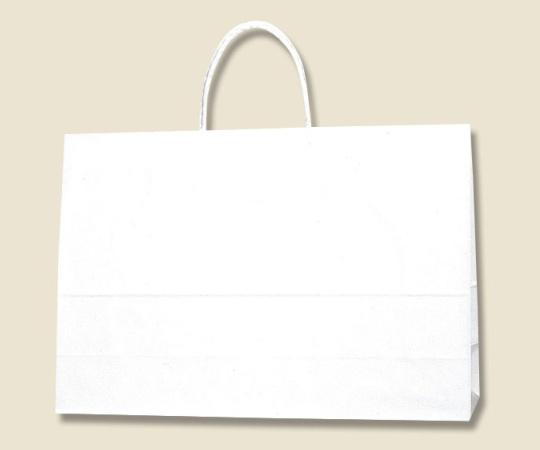 HEIKO 紙袋 スムースバッグ Y-2 白無地 25枚 003157200