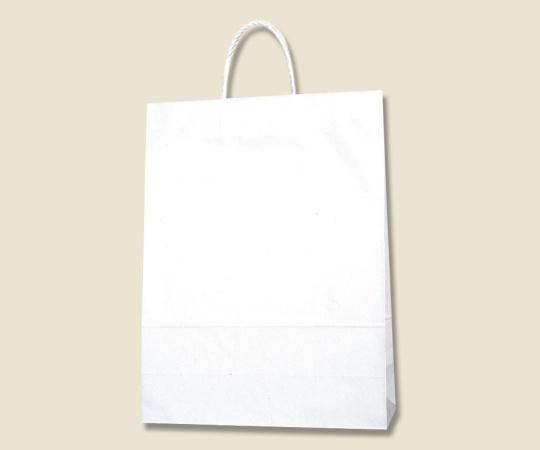 HEIKO 紙袋 スムースバッグ カスタム判 白無地 25枚 003157100
