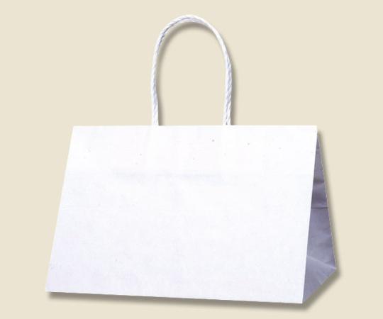 HEIKO 紙袋 Pスムース 31-19 白無地 25枚 003155200