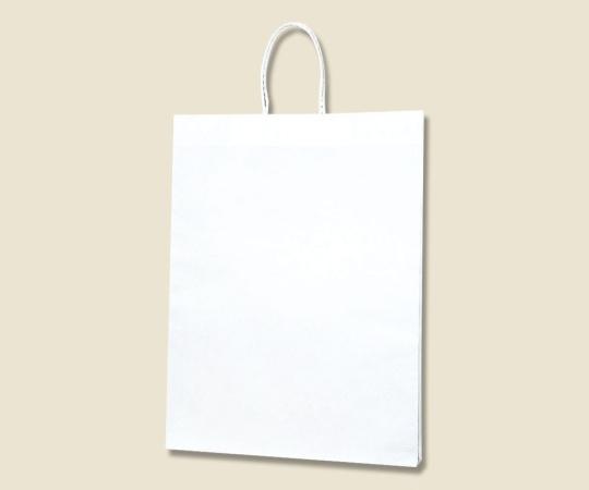 HEIKO 紙袋 Pスムース 39-4 白無地 25枚 003155100