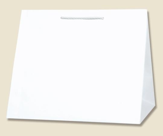 HEIKO 紙袋 T型チャームバッグ W3 白無地 10 枚 003160800