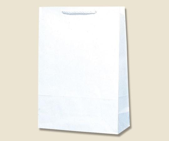 HEIKO 紙袋 T型チャームバッグ 大判 白無地 50枚 003182100