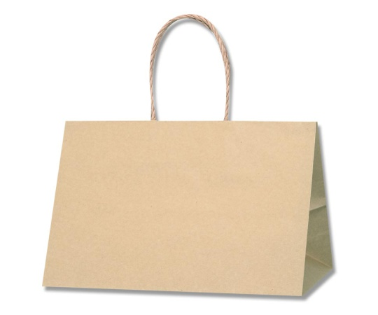 HEIKO 紙袋 Pスムース 31-19 未晒無地 25枚 003155204