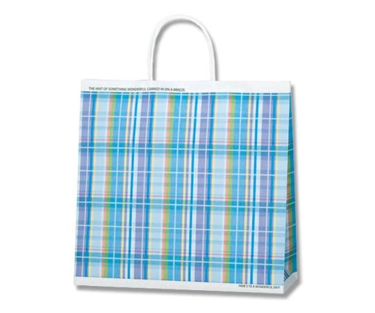 [取扱停止]HEIKO 紙袋 25チャームバッグ 25CB 3才 マドラスチェック B 50枚 003261443