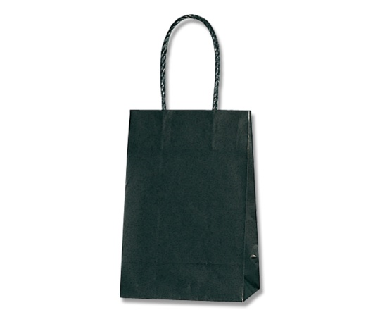 HEIKO 紙袋 スムースバッグ 16-2 黒無地 25枚 003137801