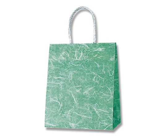 HEIKO 紙袋 スムースバッグ 22-12 雲竜 緑 25枚 003156119