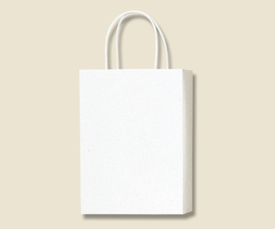 HEIKO 紙袋 PBスムース S-1 白 10枚 003136301