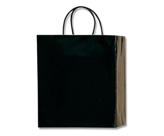 HEIKO 紙袋 PBスムース M-1 黒 10枚 003136200