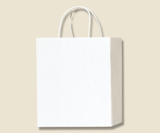 HEIKO 紙袋 PBスムース M-1 白 10枚 003136201