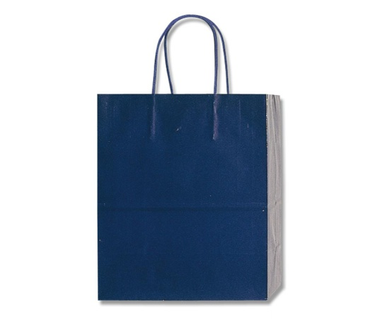 HEIKO 紙袋 PBスムース M-1 紫紺 10枚 003136204