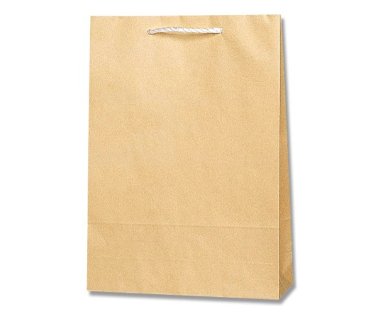 HEIKO 紙袋 T型チャームバッグ 2才 半晒無地 50枚 003103100