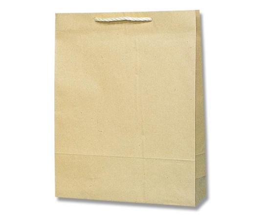 HEIKO 紙袋 T型チャームバッグ カスタム判 半晒無地 50枚 003170200