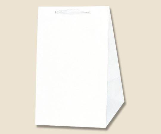 HEIKO 紙袋 広口チャームバッグ L-2 10枚 006442201