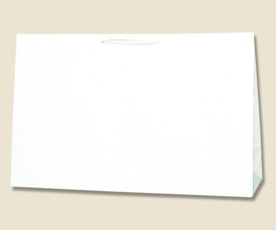 HEIKO 紙袋 広口チャームバッグ BR-1 10枚 006442301