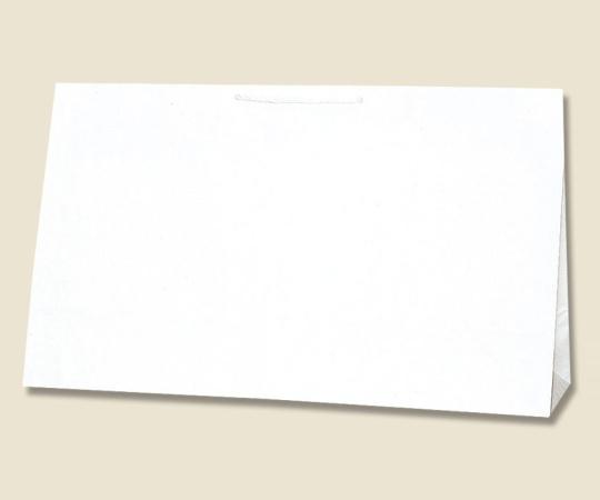 HEIKO 紙袋 広口チャームバッグ BR-2 10枚 006442401
